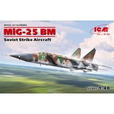 48905 МиГ-25 БМ, Советский противорадарный самолет